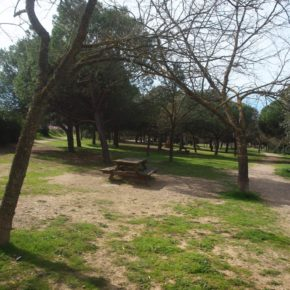 Ciudadanos (Cs) Terrassa reclama recuperar el parque infantil de la depuradora de Les Fonts